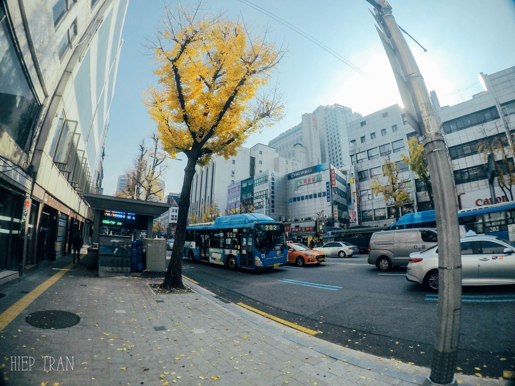 Khách sạn ở Seoul